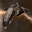 Prophecy Blood Raiders Edition Combat Battlecruiser